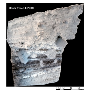 Orthophoto of complete PS010 profile face.